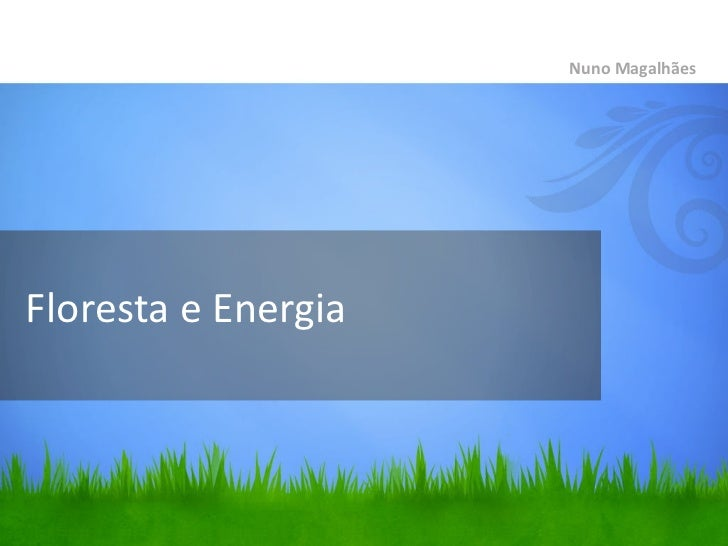 Floresta e Energia <ul><li>Nuno Magalhães </li></ul>