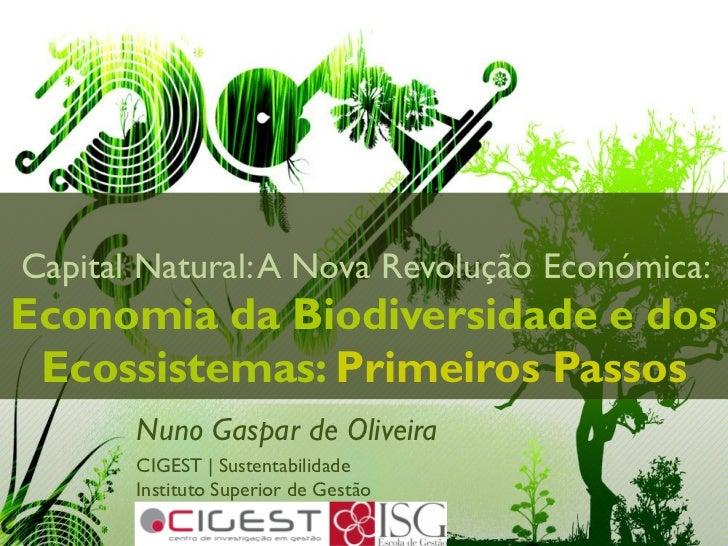 Capital Natural: A Nova Revolução Económica:Economia da Biodiversidade e dos Ecossistemas: Primeiros Passos       Nuno Gas...