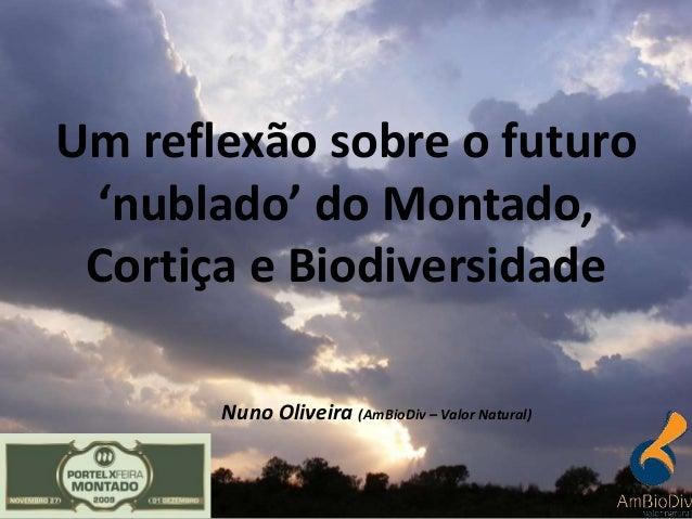 Nuno Oliveira (AmBioDiv – Valor Natural) Um reflexão sobre o futuro 'nublado' do Montado, Cortiça e Biodiversidade