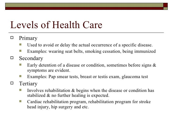 example of health care essay