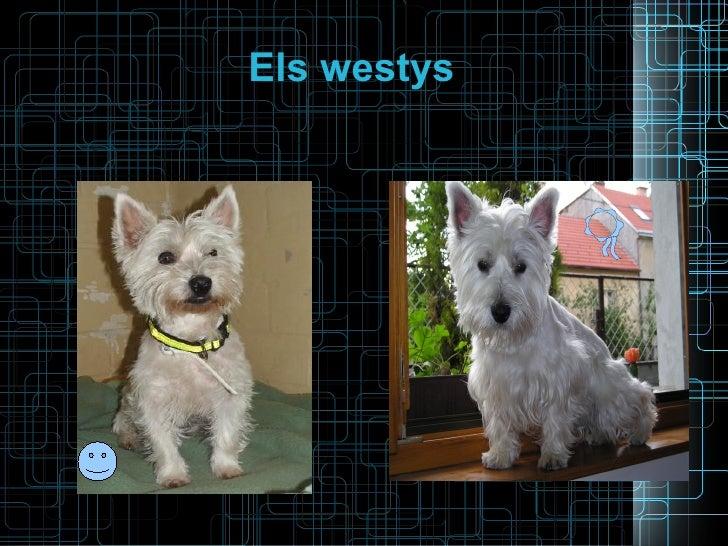 Els westys
