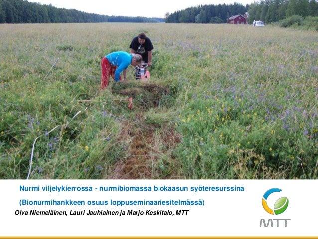 Oiva Niemeläinen, Lauri Jauhiainen ja Marjo Keskitalo, MTT Nurmi viljelykierrossa - nurmibiomassa biokaasun syöteresurssin...