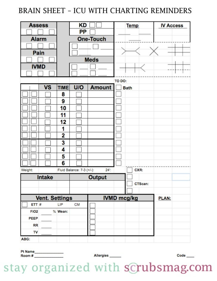 Nurse brain sheet icu for Nursing brains template