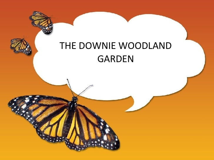 THE DOWNIE WOODLAND GARDEN