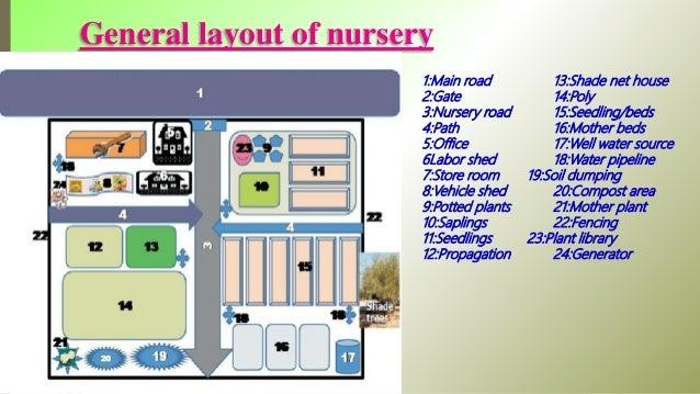 Garden Nursery Layout