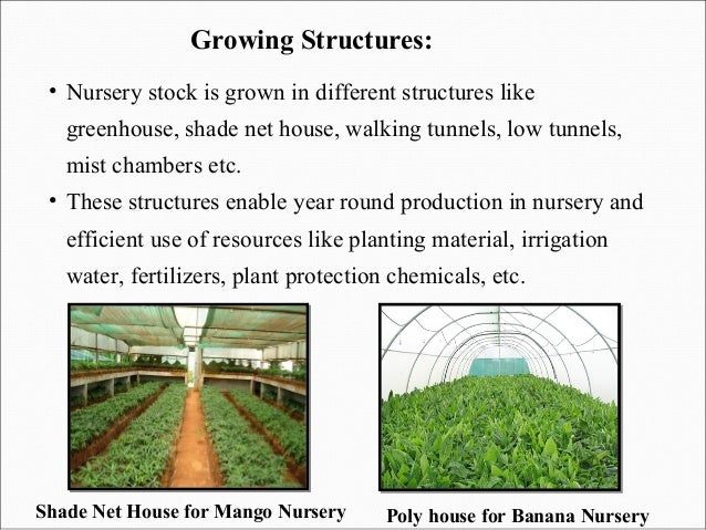 Nursery management part 1