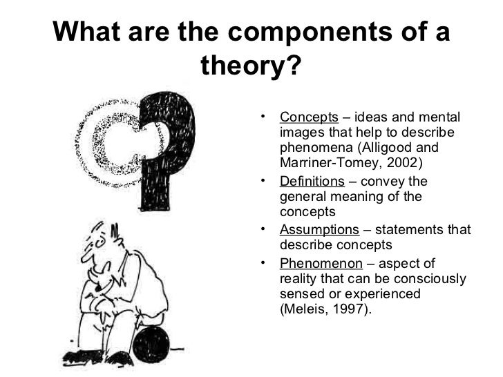 3 What Are The Components Of A Theory