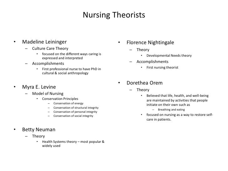 Imogene king nursing theory