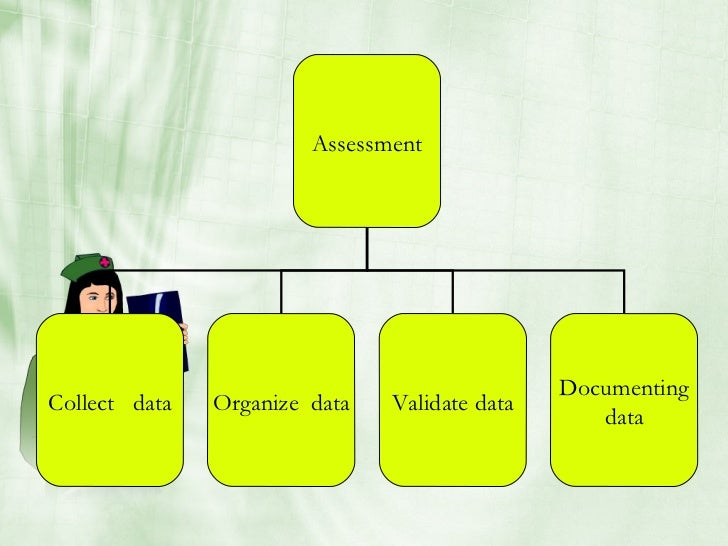 Assessment                                                    Documenting Collect data   Organize data   Validate data    ...