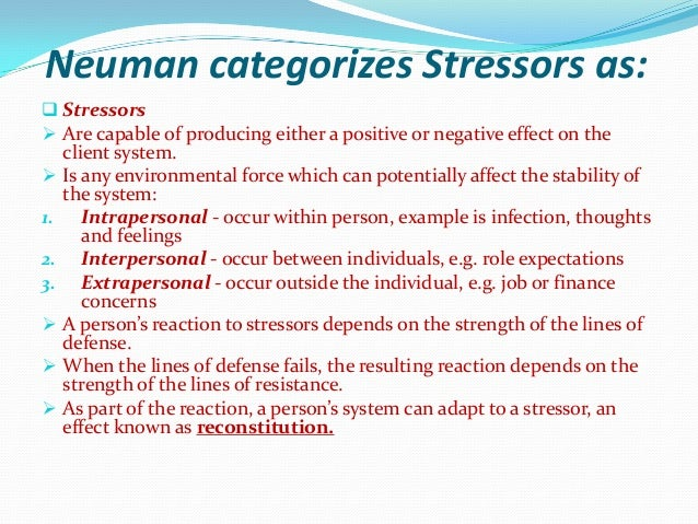 neumans systems theory