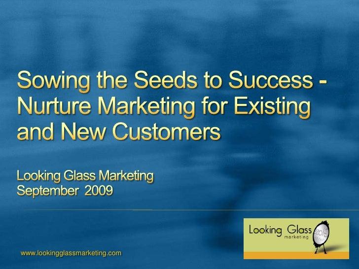 Effective B-to-B Marketing Strategies for Today's Economy Looking Glass MarketingSeptember  2009<br />www.lookingglassmark...