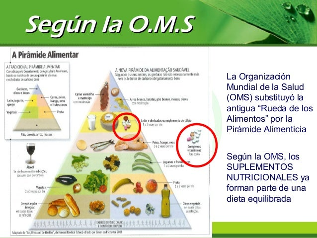 Nutrientes e suplementos para hipertrofia muscular e rendimento 2