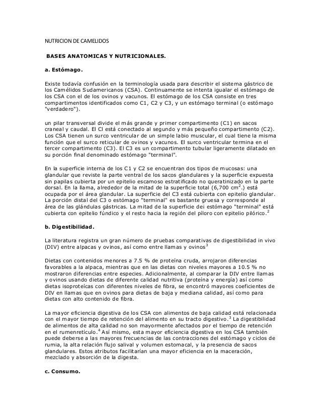 NUTRICION DE CAMELIDOS BASES ANATOMICAS Y NUTRICIONALES. a. Estómago. Existe todavía confusión en la terminología usada pa...