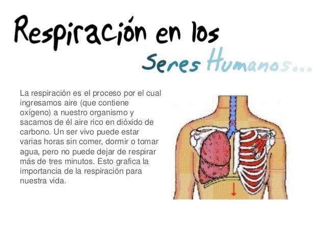 Nutrición, Digestión, Respiración, Circulación y Excreción.