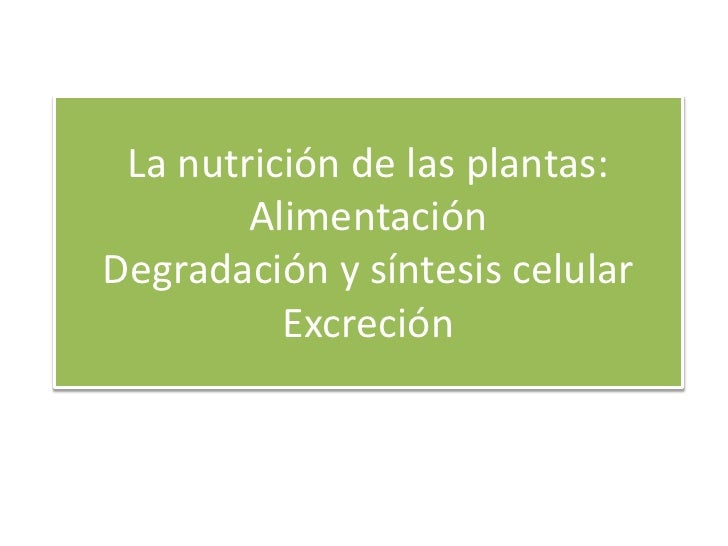 La nutrición de las plantas:        AlimentaciónDegradación y síntesis celular          Excreción