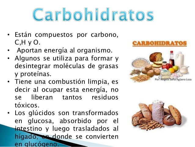 Nutrici n composici n alimentos - Q alimentos son proteinas ...