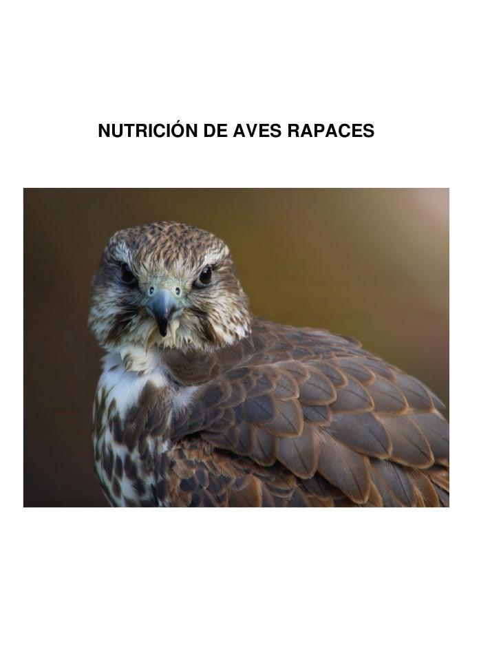 NUTRICIÓN DE AVES RAPACES