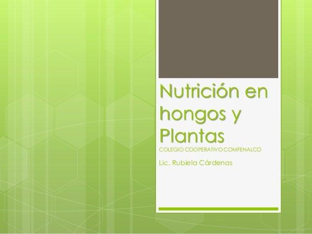 Nutrición enhongos yPlantasCOLEGIO COOPERATIVO COMFENALCOLic. Rubiela Cárdenas