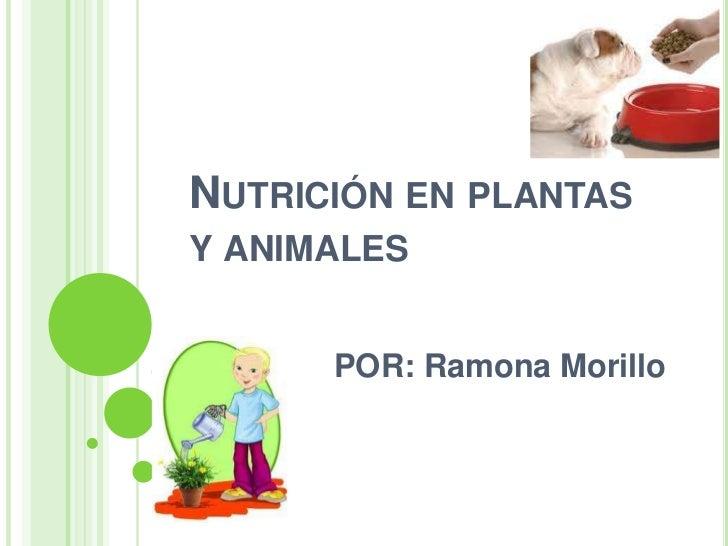 NUTRICIÓN EN PLANTASY ANIMALES      POR: Ramona Morillo
