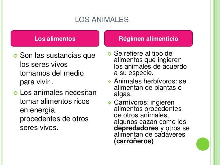 Nutrici n en plantas y animales for Porque son importantes los arboles wikipedia