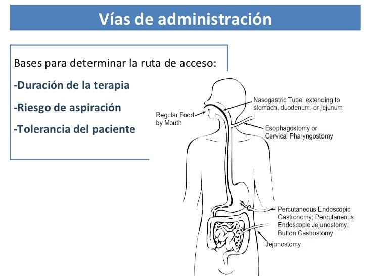 Bases para determinar la ruta de acceso: -Duración de la terapia -Riesgo de aspiración -Tolerancia del paciente  Vías de a...