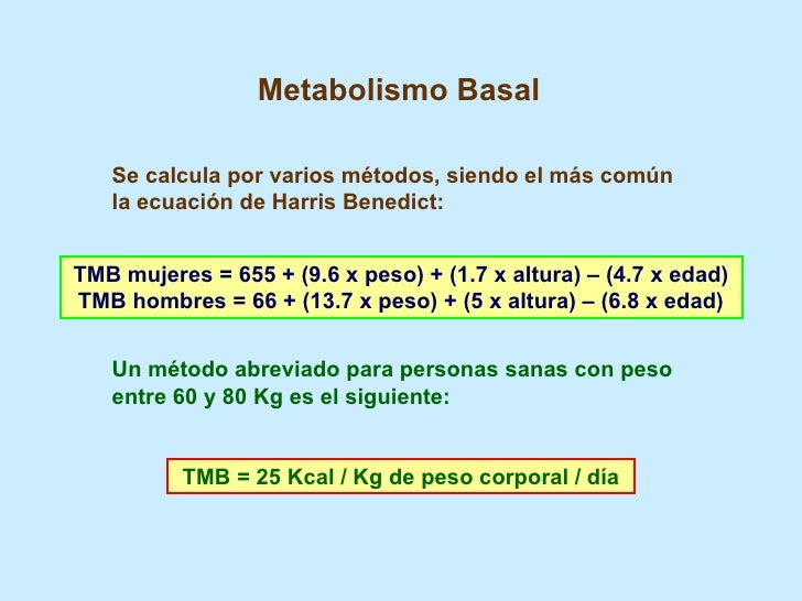 Acelerar metabolismo Al igual que Bill Gates para tener éxito en su inicio
