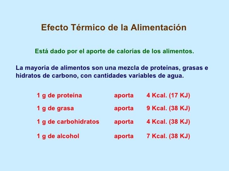 Tabla de calorias proteinas carbohidratos y grasas de los alimentos - Calcular calorias de los alimentos ...