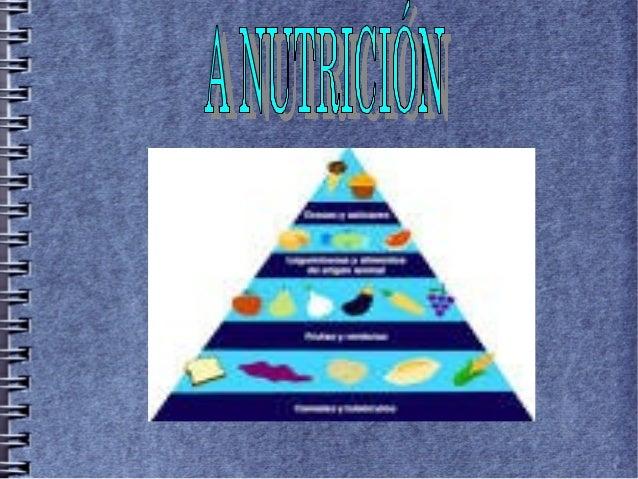 Na nutrición hai catro aparellos: O aparello dixestivo ● O aparello respiratorio ● O aparello excretor ● O aparello circul...