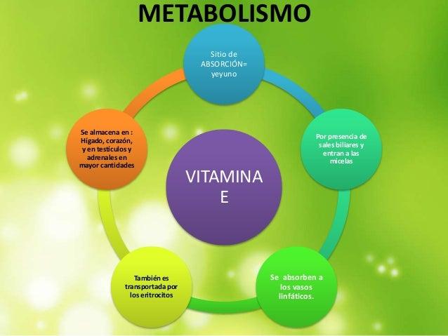 Aprende a empezar dieta mediterránea