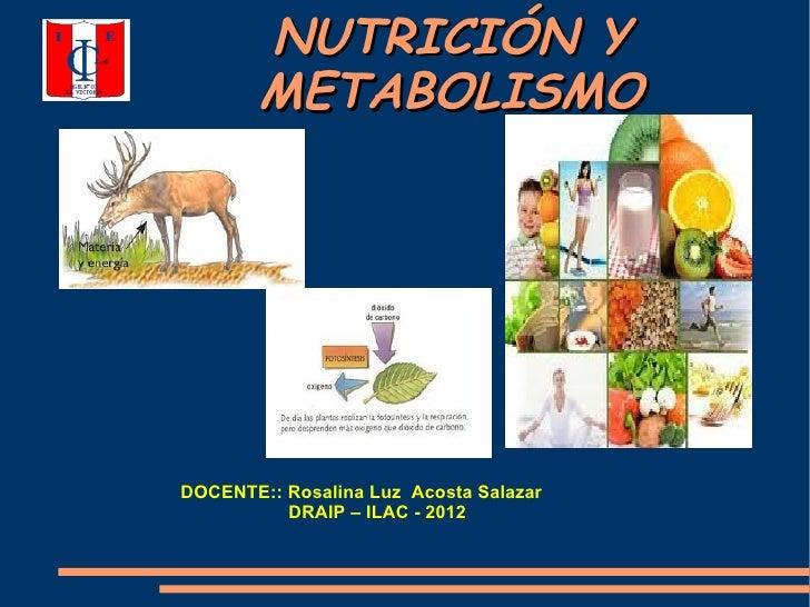 Más sobre calcular metabolismo basal formula