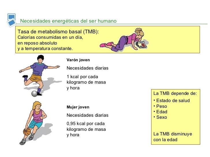 Lo que Alberto Savoia puede entrenarte sobre Cómo aumentar el metabolismo