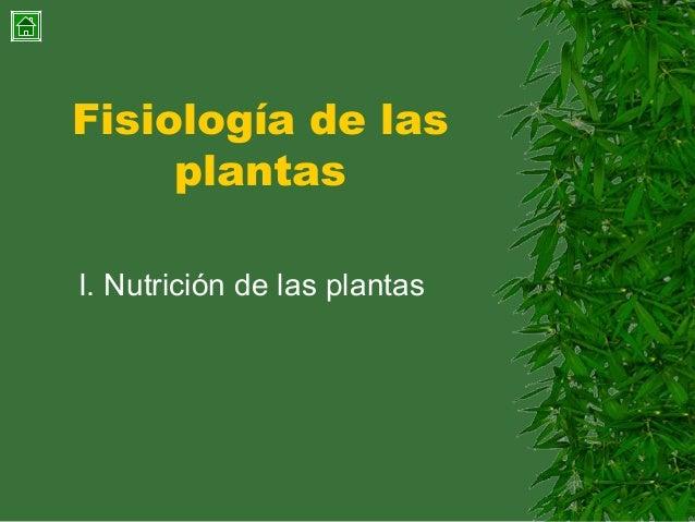 Fisiología de las plantas I. Nutrición de las plantas