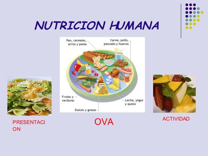 NUTRICION HUMANA OVA ACTIVIDAD PRESENTACION