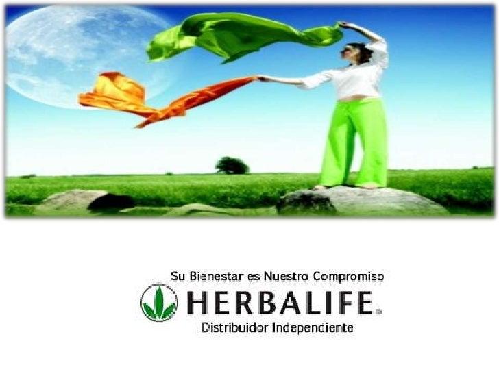 Lo que  comimosAYER nos dio  energía y  nutrientes     para  regenerar   células y tejidos del organismo.
