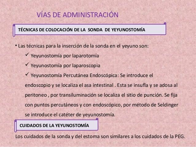 2013 09 11 nutricion enteral ptt for Que es tecnica de oficina wikipedia