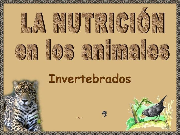 LA NUTRICIÓN en los animales