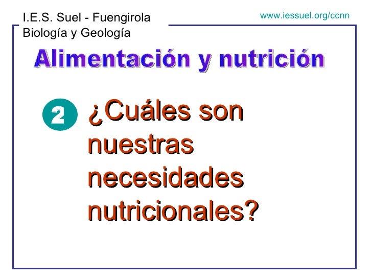 Alimentación y nutrición I.E.S. Suel - Fuengirola Biología y Geología www.iessuel.org/ccnn ¿Cuáles son nuestras necesidade...