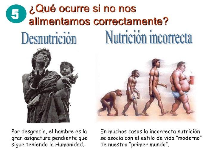 ¿Qué ocurre si no nos alimentamos correctamente? Desnutrición Nutrición incorrecta En muchos casos la incorrecta nutrición...