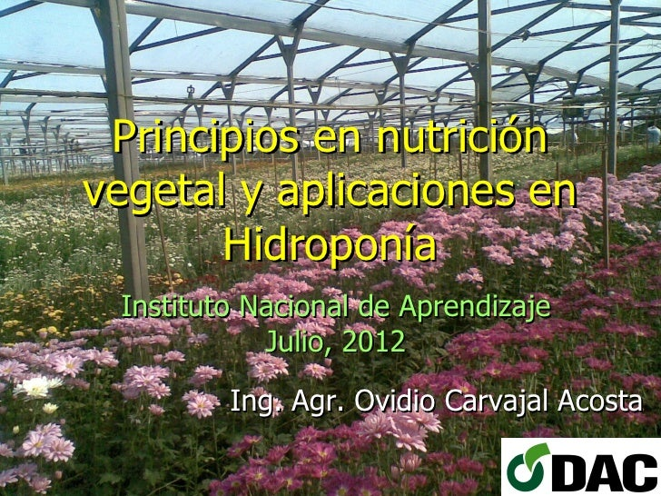 Principios en nutriciónvegetal y aplicaciones en       Hidroponía Instituto Nacional de Aprendizaje            Julio, 2012...