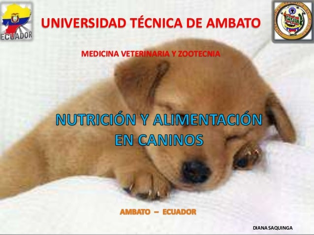 UNIVERSIDAD TÉCNICA DE AMBATO MEDICINA VETERINARIA Y ZOOTECNIA  DIANA SAQUINGA