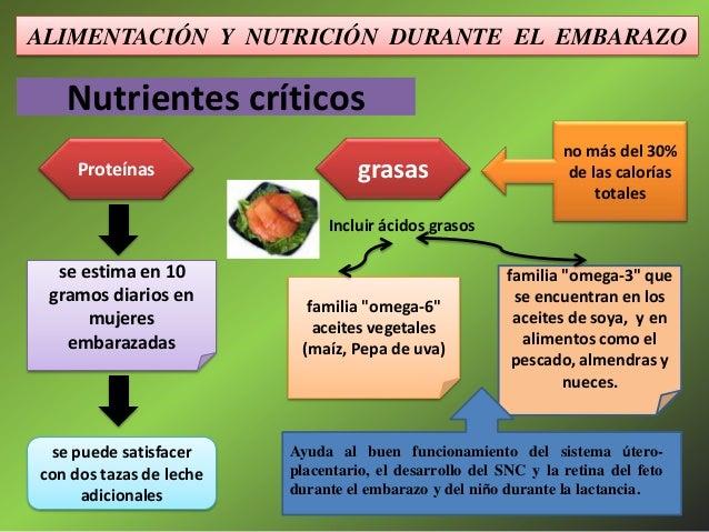 Nutricion y alimentacion durante el embarazo - Alimentos no permitidos en el embarazo ...