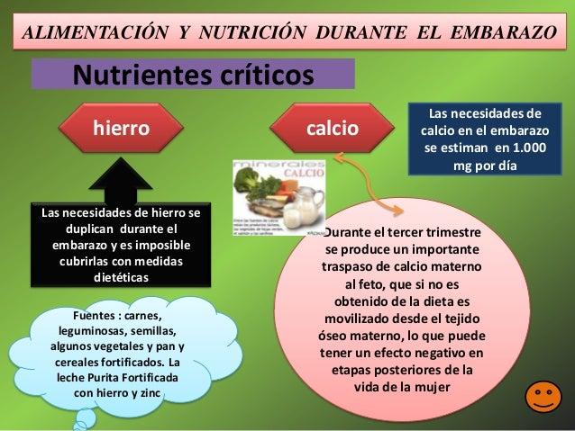 Nutricion y alimentacion durante el embarazo - Alimentos que contengan hierro para embarazadas ...