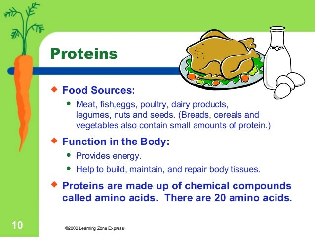 the importance of proteins in the human body Excluding the water present in the human body, about one half of the remaining mass is composed of a class of molecules called proteins it should therefore be of no surprise that proteins carry out many important biological processes amino acids.