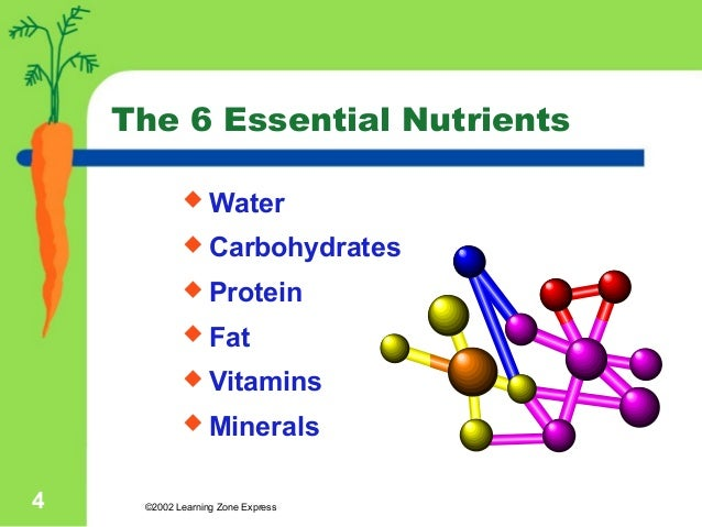 PPT on Nutrients