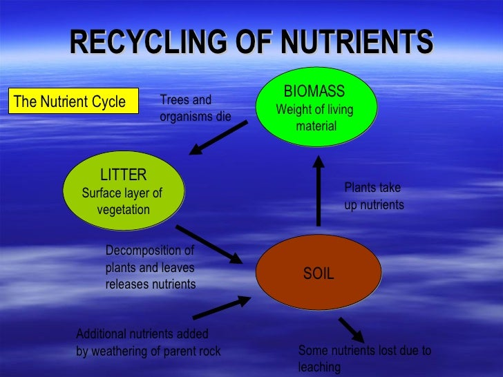 nutrient cycle Nutrient cycling is an essential process in an ecosystem in the nutrient cycle, the usage of the nutrients in the environment, their move.
