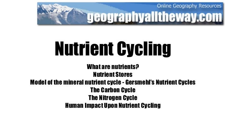 Nutrient Cycling                       What are nutrients?                         Nutrient Stores Model of the mineral nu...