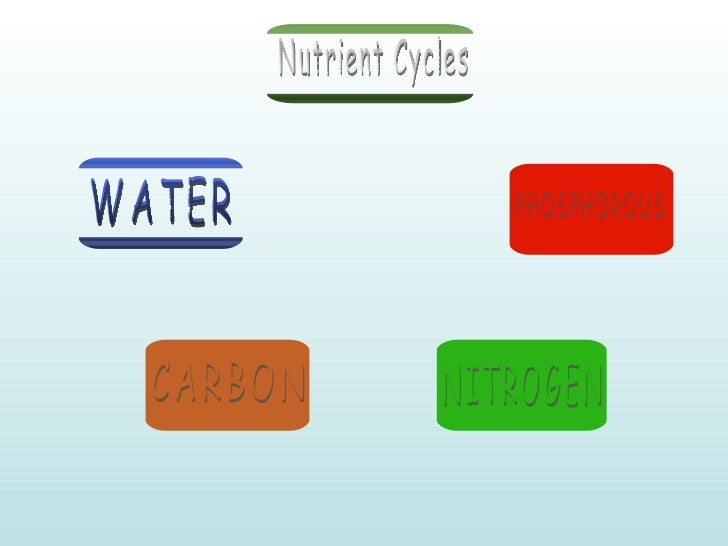 Nutrient Cycles WATER CARBON NITROGEN PHOSPHOROUS