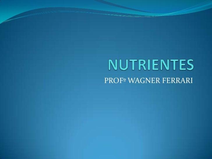 NUTRIENTES<br />PROFº WAGNER FERRARI<br />