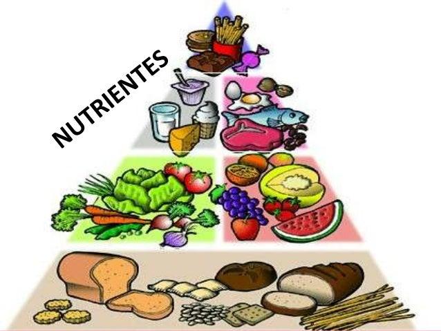 • Los nutrientes son aquellos componentes de los  alimentos que tienen una función  energética, estructural o reguladora. ...