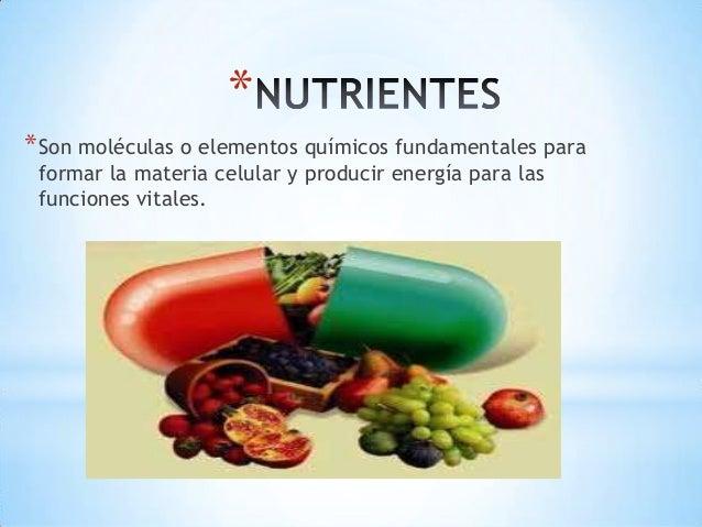 **Son moléculas o elementos químicos fundamentales paraformar la materia celular y producir energía para lasfunciones vita...
